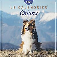 chiens-le-calendrier-2021