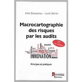 Macrocartographie des risques par les audits : principes et pratiques