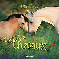 chevaux-calendrier-2021-1