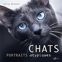 chats-portraits-atypiques