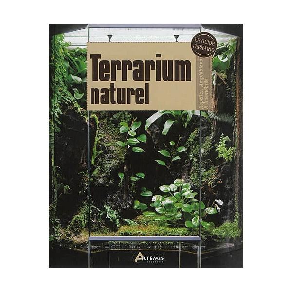 Terrarium Naturel Reptiles Amphibiens Invertbrs Reptiles