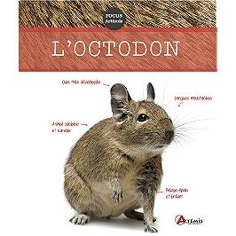 L'octodon