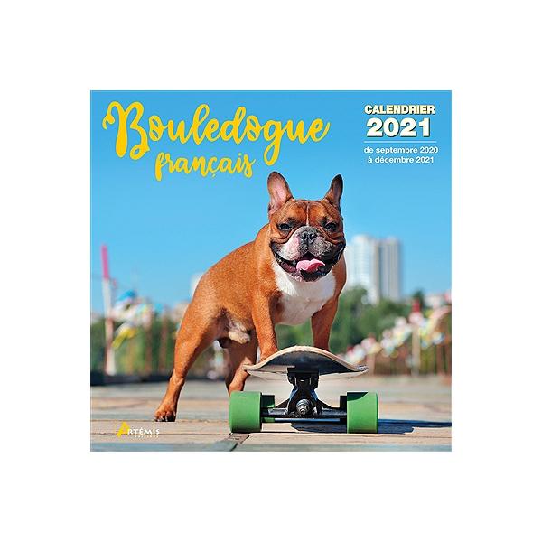 Bouledogue français : calendrier 2021 : de septembre 2020 à