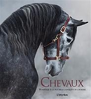 chevaux-hommage-a-la-plus-belle-conquete-de-lhomme