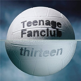 Thirteen, Vinyle 33T