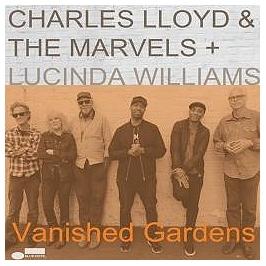 Vanished gardens, Double vinyle