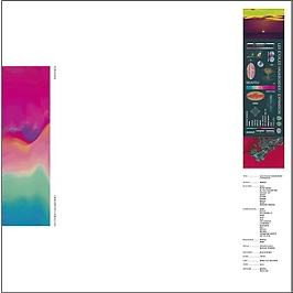 Les étoiles vagabondes : expansion, Vinyle 33T