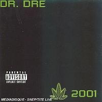 chronic-2001