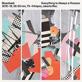 Everything is always a process, Vinyle 33T