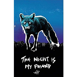 The night is my friend, Vinyle 33T