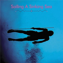 Sailing a sinking sea, Vinyle 33T