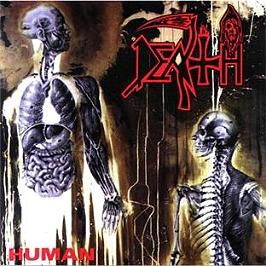 Human, CD