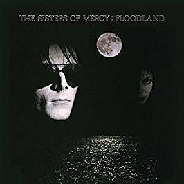 Floodland, Vinyle 33T