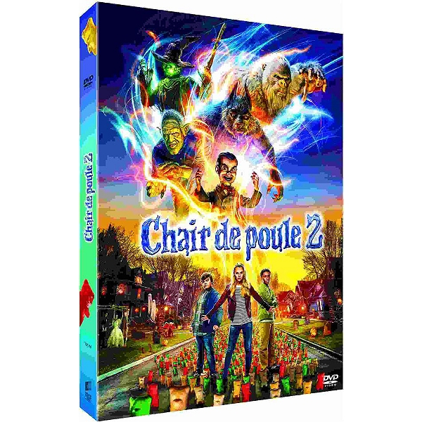 Dvd Chair De Poule 2 Les Fantômes Dhalloween Espace Culturel