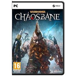 Warhammer : chaosbane (PC)