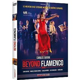 Beyond flamenco, Dvd
