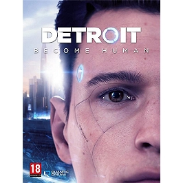 Detroit become human (PC)