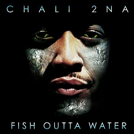 Fish outta water, Double vinyle