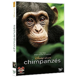 Chimpanzés, Dvd