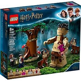Lego® Harry Potter - La Forêt Interdite : La Rencontre D'ombrage - 75967 - 75967