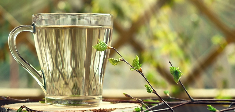verre de sève de bouleau